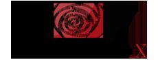 Bông Hồng Sáp Thơm Hoa Hồng Sáp Thơm Sỉ Và Lẻ Giá Rẻ TPHCM